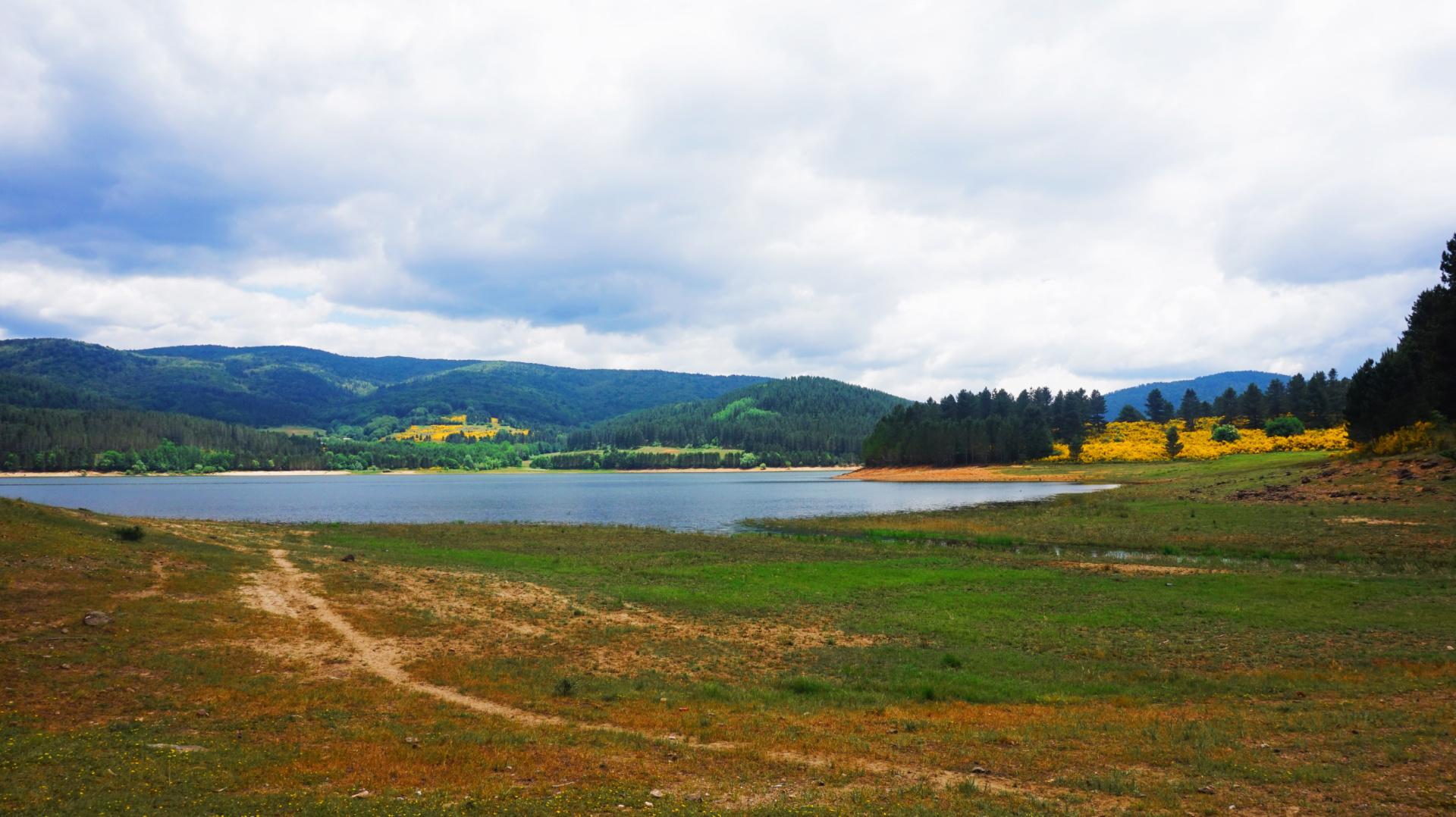 sway the way lake arvo meadow