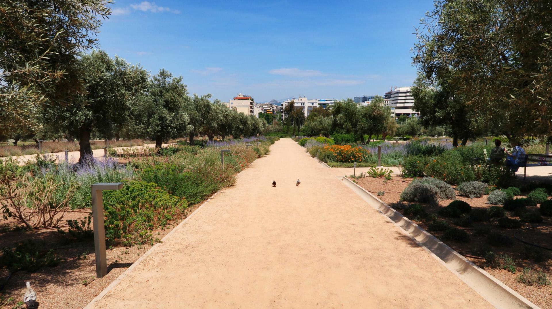 sway the way greece athens artcenter garden1