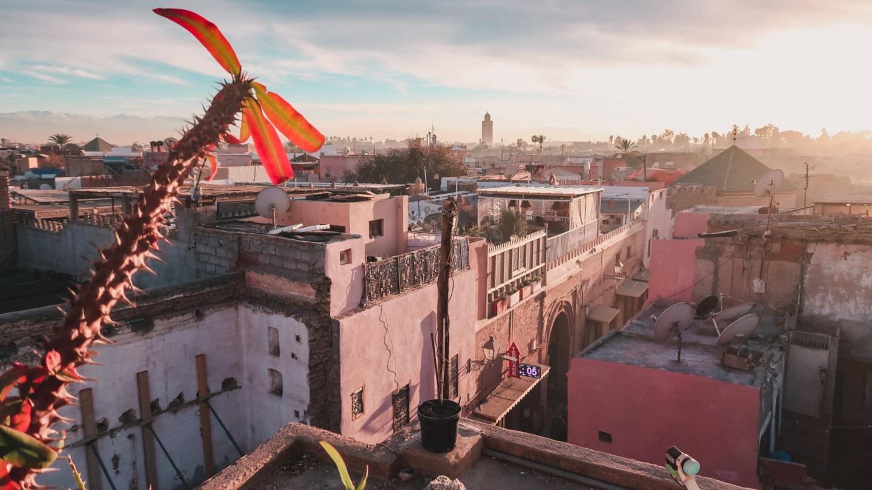 sway the way marrakesz 49